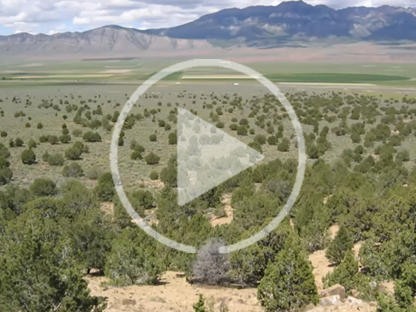 SRM Symposium: What has SageSTEP learned about sagebrush ecosystems after 10+ yrs of post-treatment monitoring?