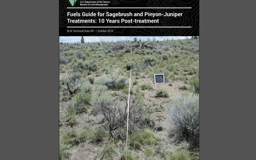 Fuels Guide for Sagebrush and Pinyon Juniper Reduction Treatments: 10 years post-treatment
